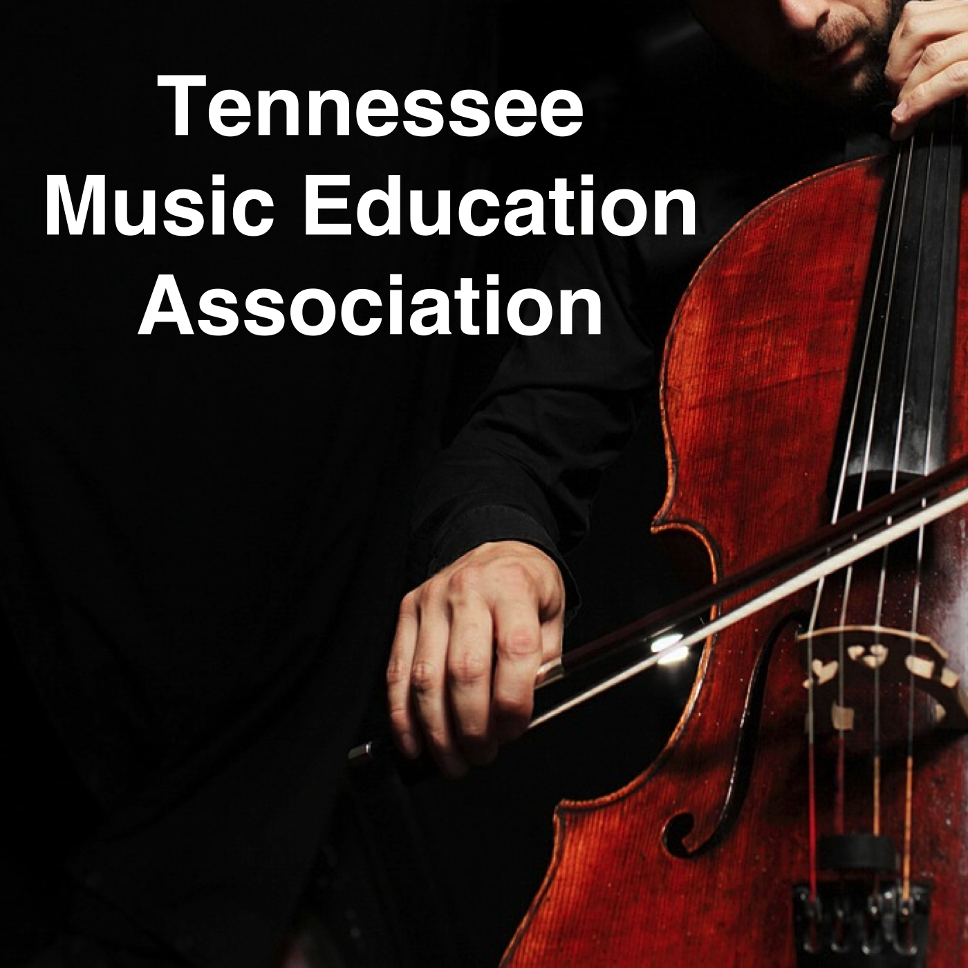 2016 Tennessee Music Educators Association
